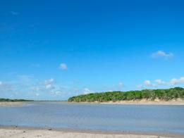Conservación de humedales de agua dulce en la Laguna Madre