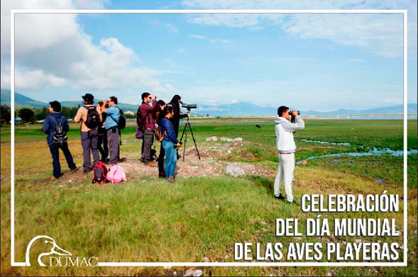 Celebración del Día Mundial de las Aves Playeras en el Lago de Cuitzeo