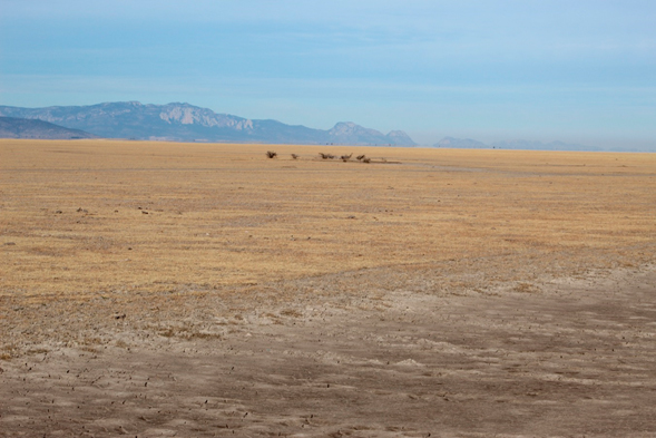 DUMAC y Ejido Venustiano Carranza: Mano a mano por la conservación de los humedales
