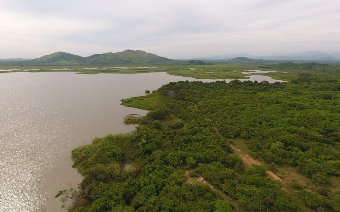 DUMAC concluye en Oaxaca y Chiapas la verificación de campo del Proyecto Inventario y Clasificación de Humedales