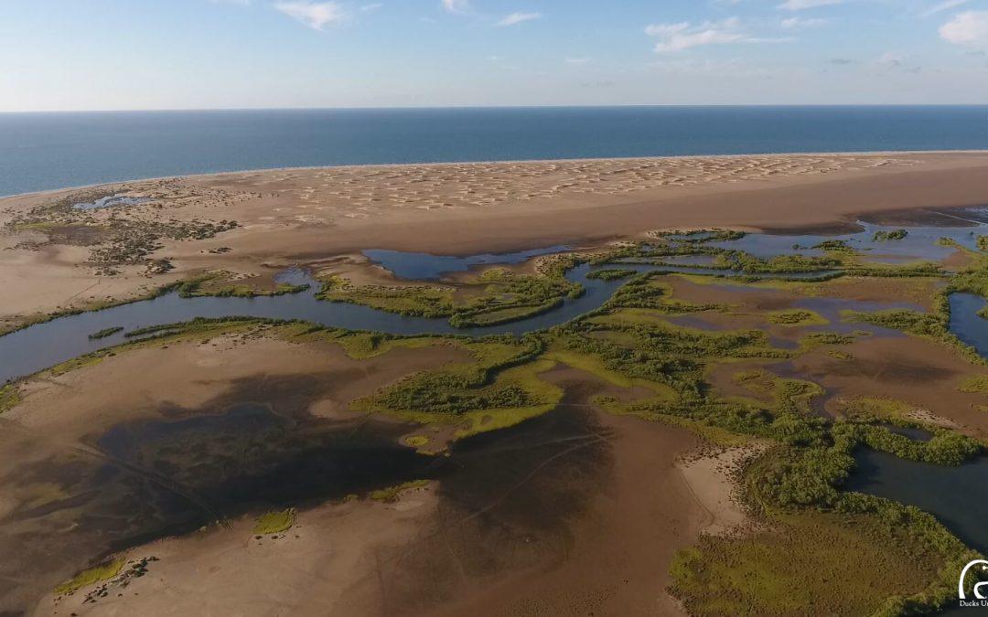 Iniciativa para la Conservación, Manejo y Restauración de Humedales en la Costa del Pacífico Norte
