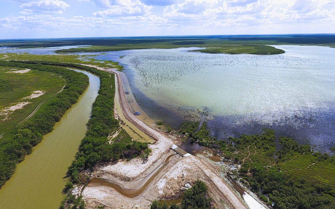 Iniciativa para la Restauración, Manejo y Conservación de Humedales de Agua Dulce en la Laguna Madre, Tamaulipas